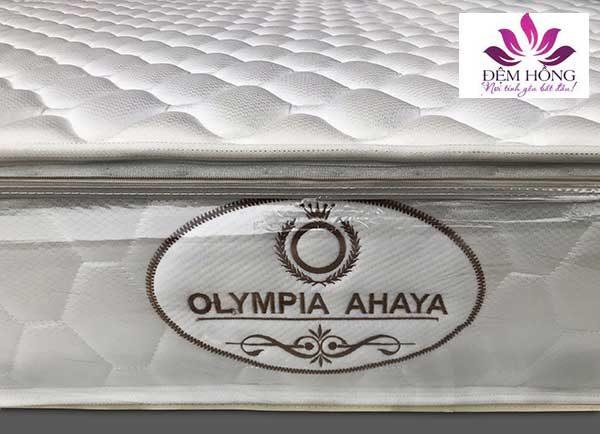 Logo đệm lò xo cối Ahaya chính hãng Olympia