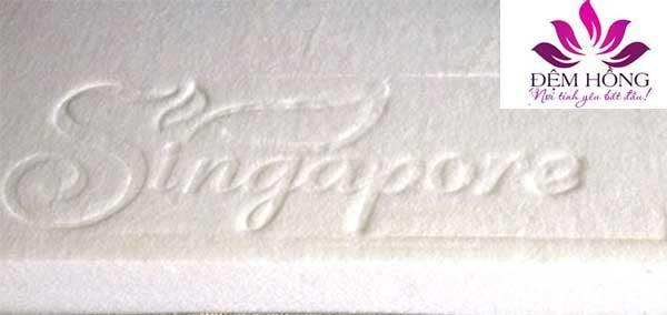 Ruột bông với logo đệm Singapore dập nổi