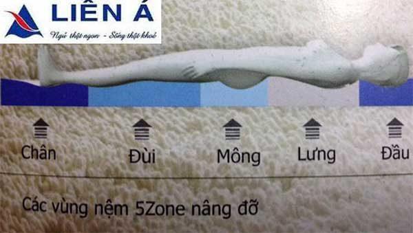 Đệm 5zone Liên Á với 5 vùng khác biệt