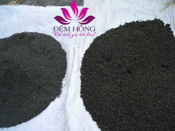 Ruột gối cát làm từ phân tằm được xử lý công nghệ cao trước khi đưa vào sử dụng