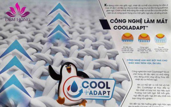 Đệm cao su La Dome Công nghệ Cool Adapt