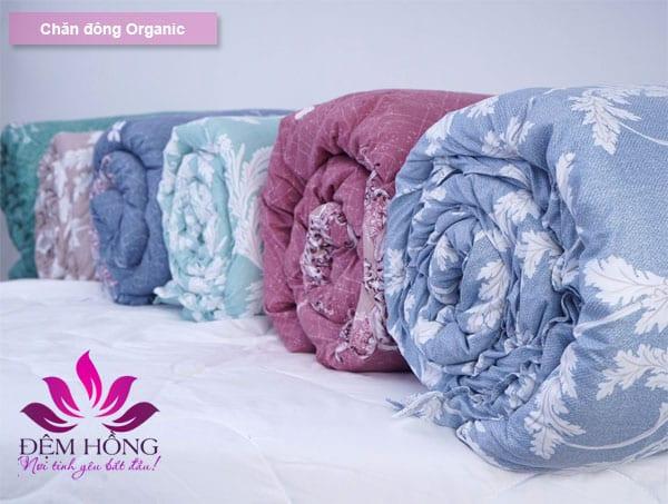 Chăn đông Organic chất lượng cao